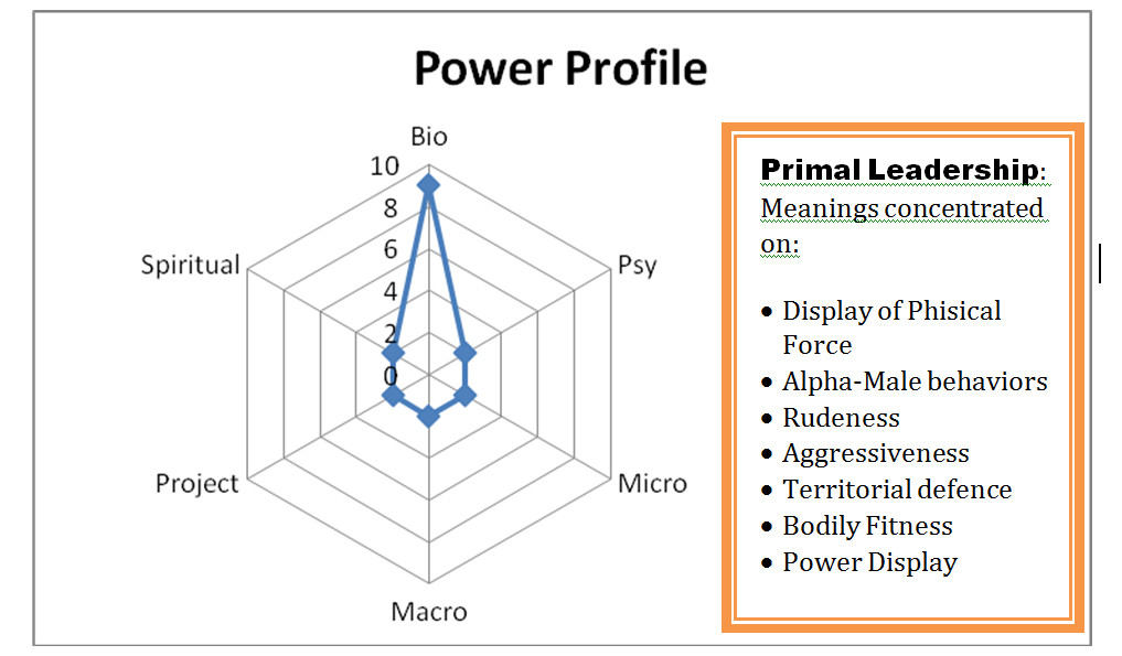 primal leadership power profile