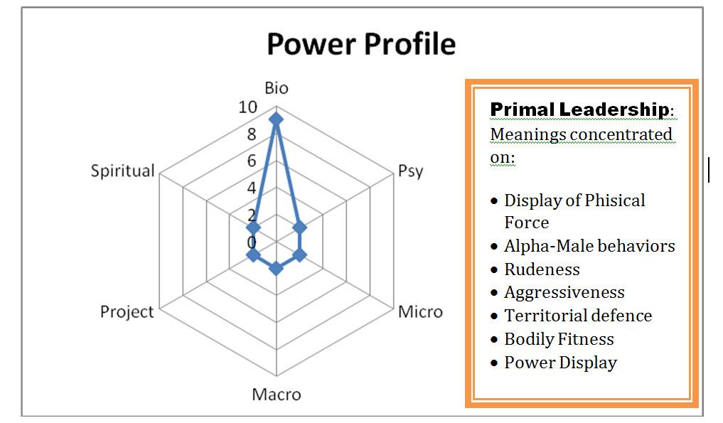 primal leadership power profile