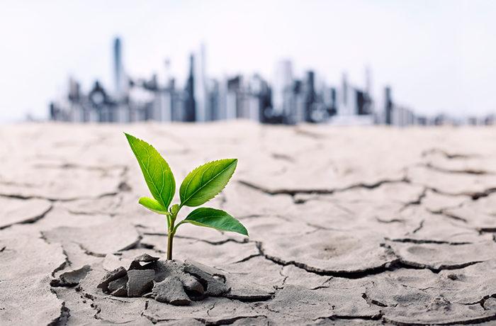 resilienza significato ed esempio